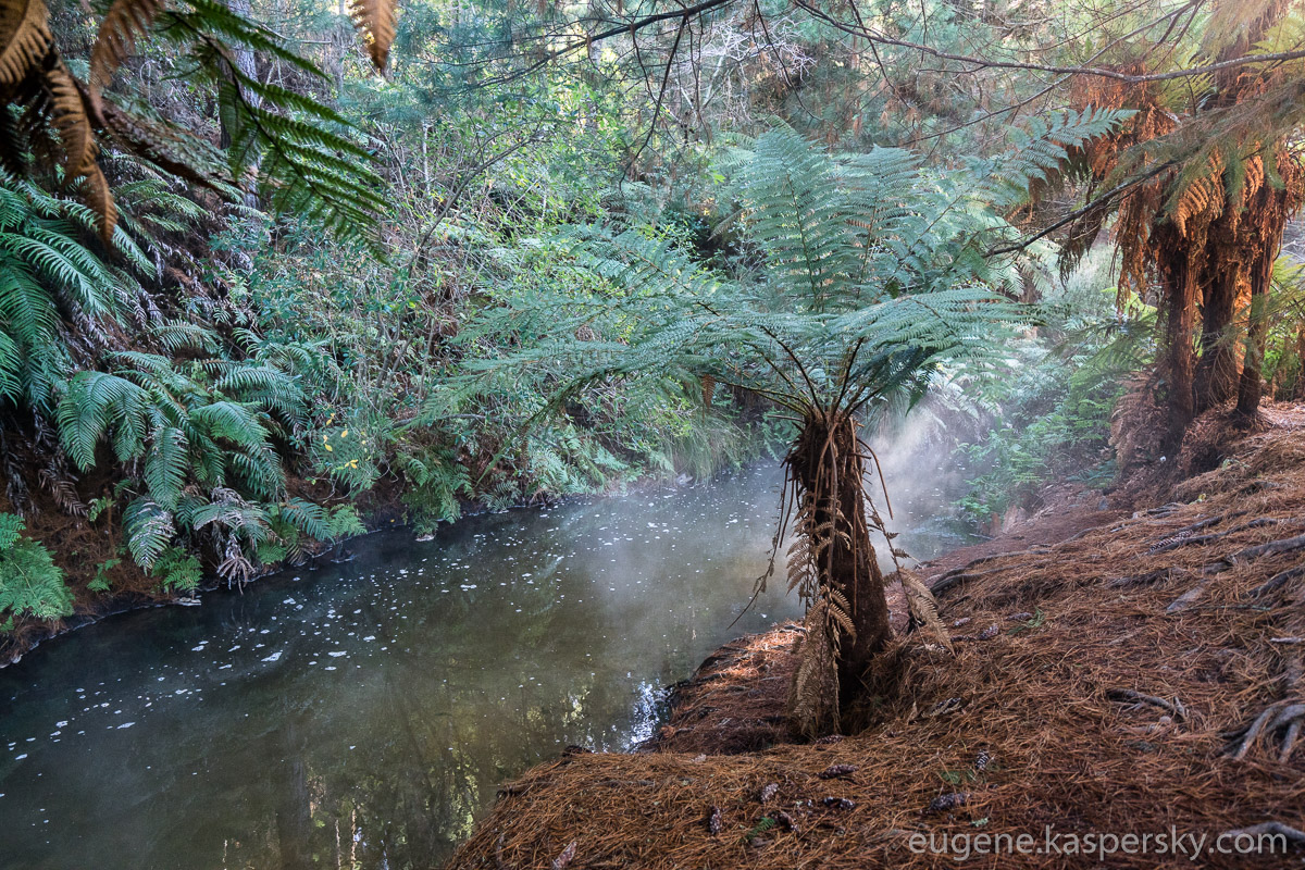 new-zealand-kerosene-creek-9