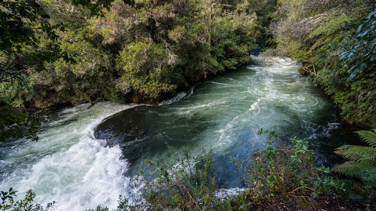 new-zealand-okere-falls-3