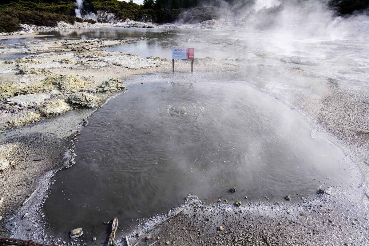 new-zealand-hells-gate-tikitere-7
