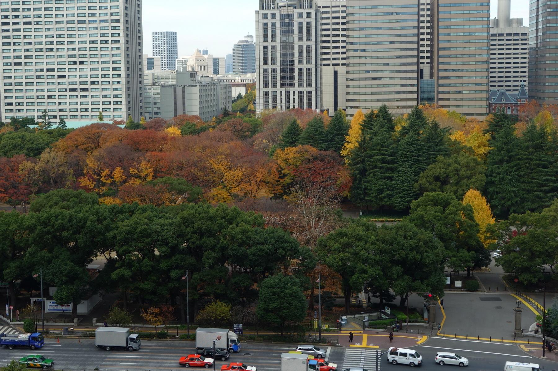 Ноябрьская акварель в Осаке