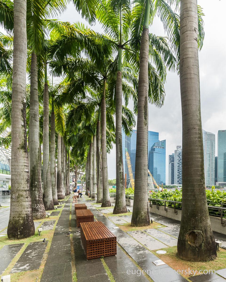 singapore-singapore-22