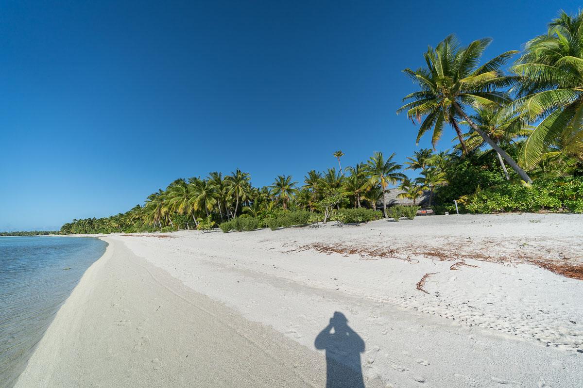murea-island-24