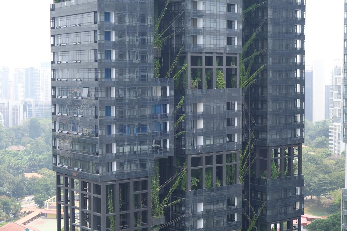 singapore-green-2