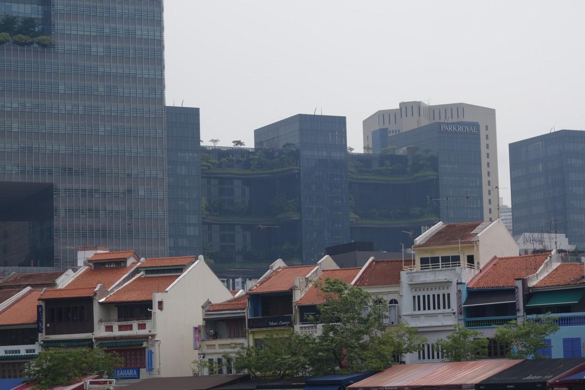 singapore-green-8