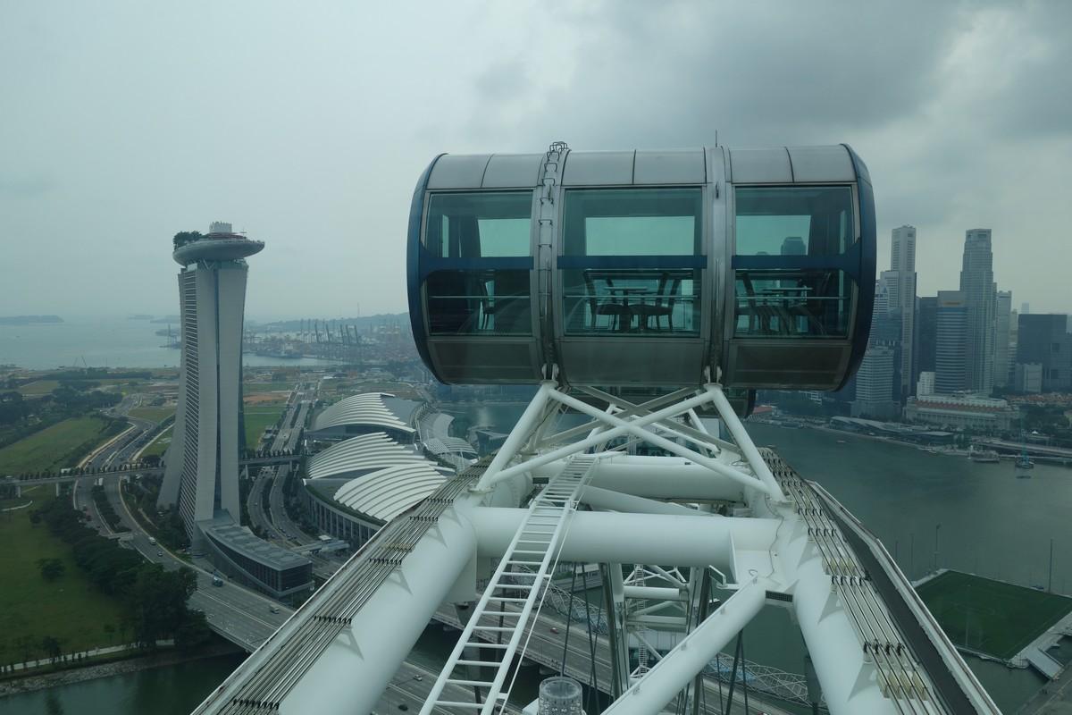 singapore-green-10