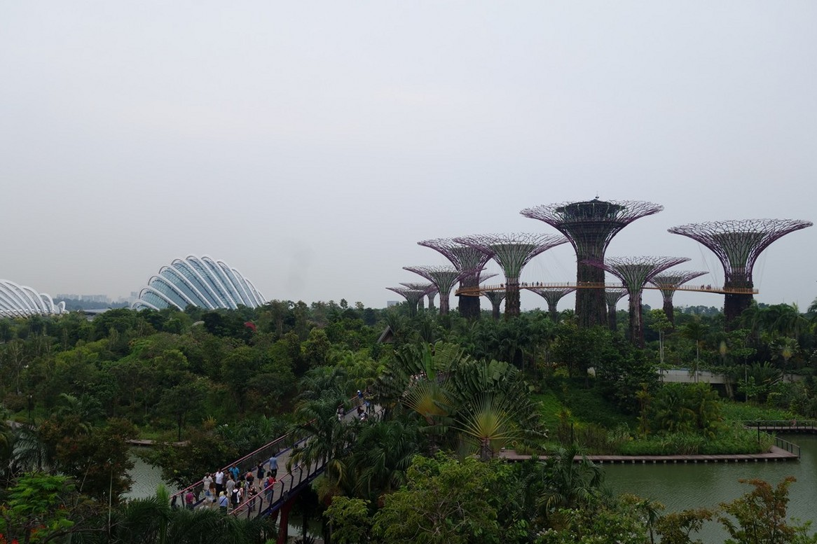 singapore-green-14