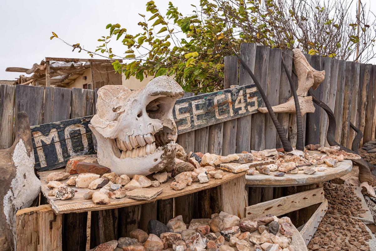 Намибия, день подвига: Берег Скелетов. Часть 1. DSC02504