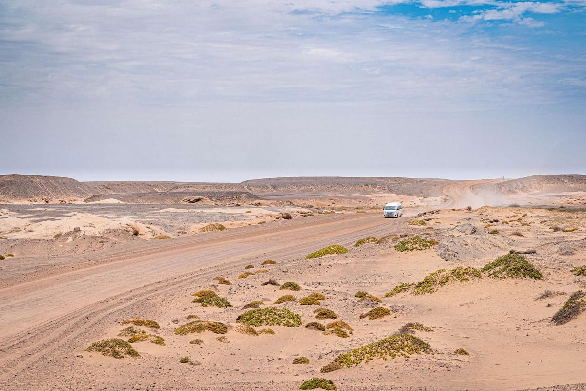 Намибия, день подвига: Берег Скелетов. Часть 1. zDSC02597
