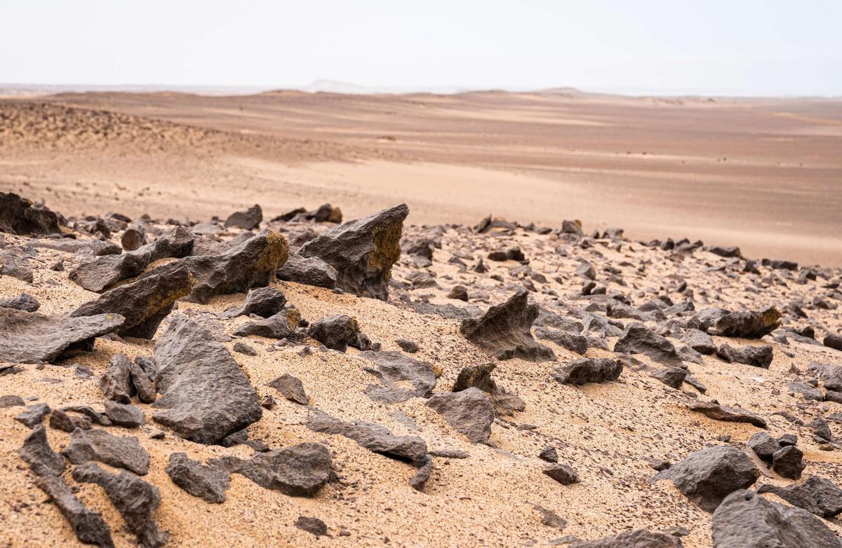 Намибия, день подвига: Берег Скелетов. Часть 1. DSC02555