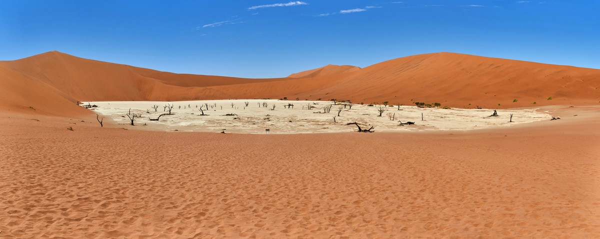 Deadvlei: Торчи и сдохни. Глупая стратегия, воды же нет... DSC03256-Pano