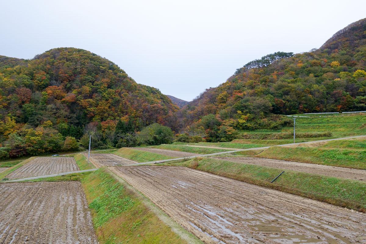sado-island-japan-fall-5