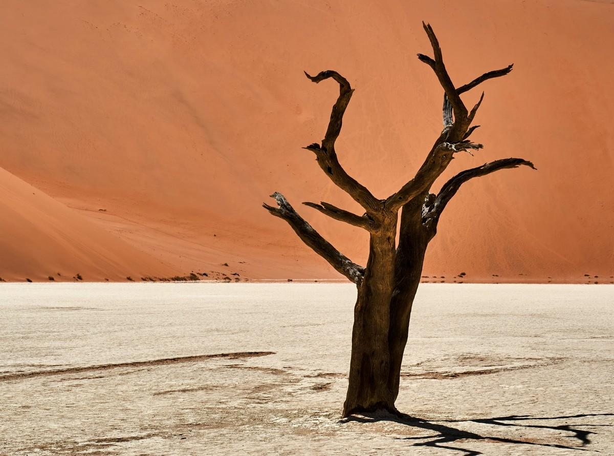 Африканская фото-декомпрессия: сотня фоток на сладкое. DSC03221-2