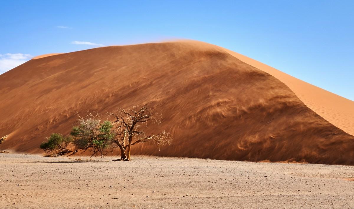 Африканская фото-декомпрессия: сотня фоток на сладкое. DSC03329