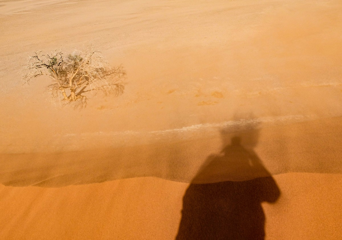 Африканская фото-декомпрессия: сотня фоток на сладкое. dscf3019_49483069491_o