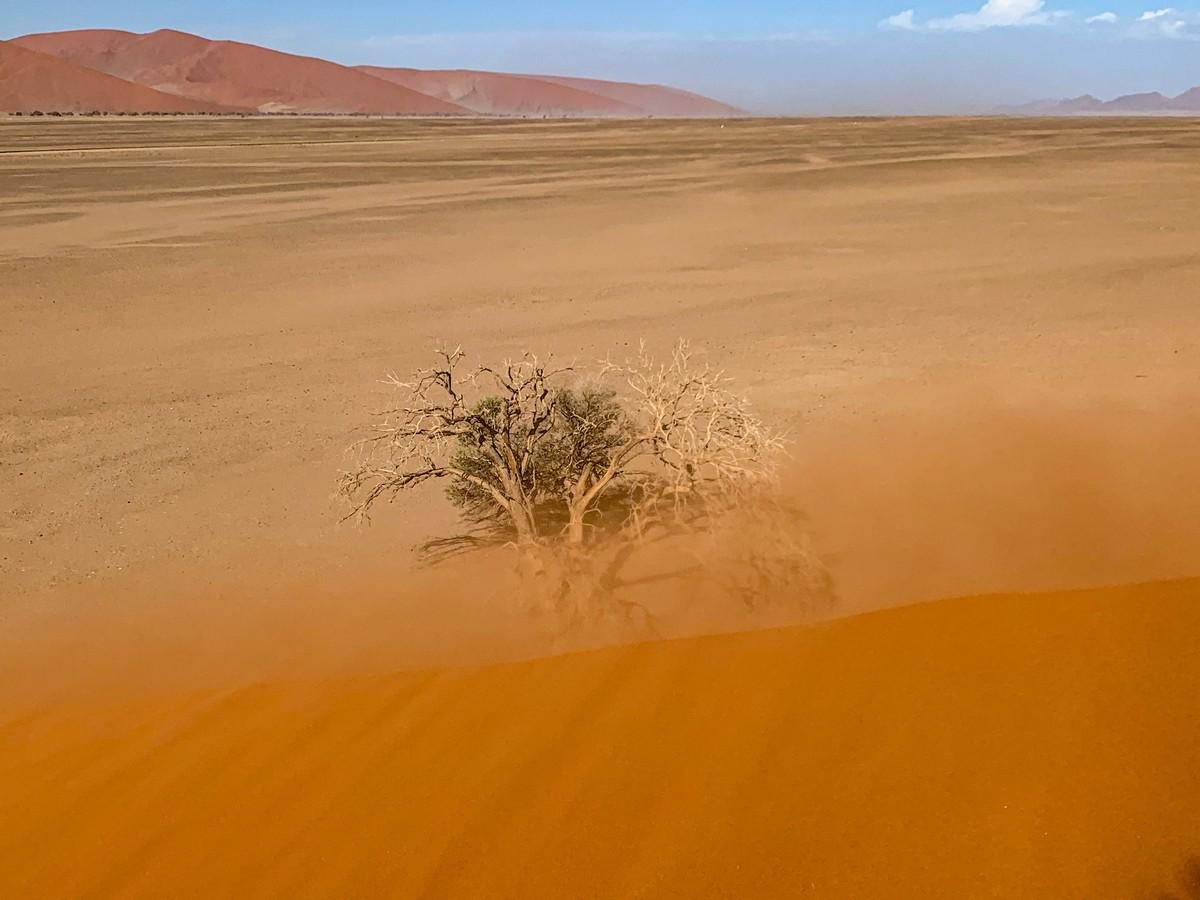 Африканская фото-декомпрессия: сотня фоток на сладкое. img_1945_49482581948_o