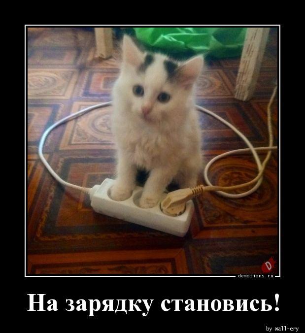 69371567851917-na-zaryadku-stanovis-demotions-ru