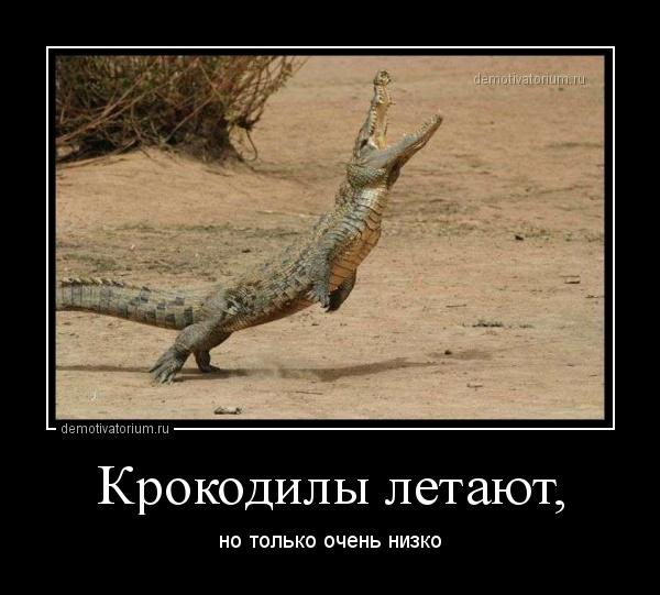 demotivatorium_ru_krokodili_letaut_148941