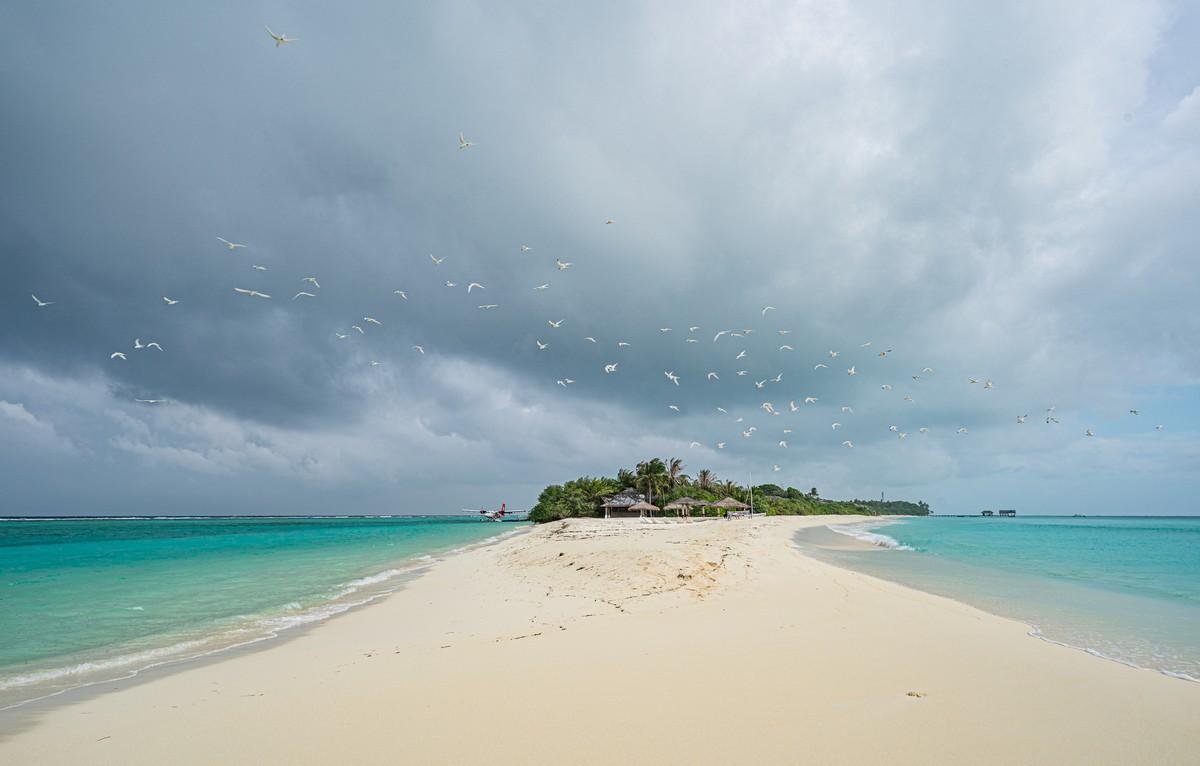 Острова везения в океане есть, практически (с) 0DSC07194