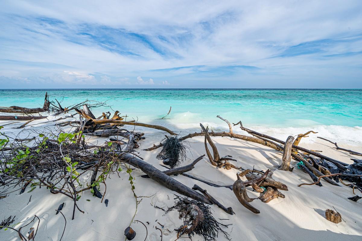 Острова везения в океане есть, практически (с) DSC07210