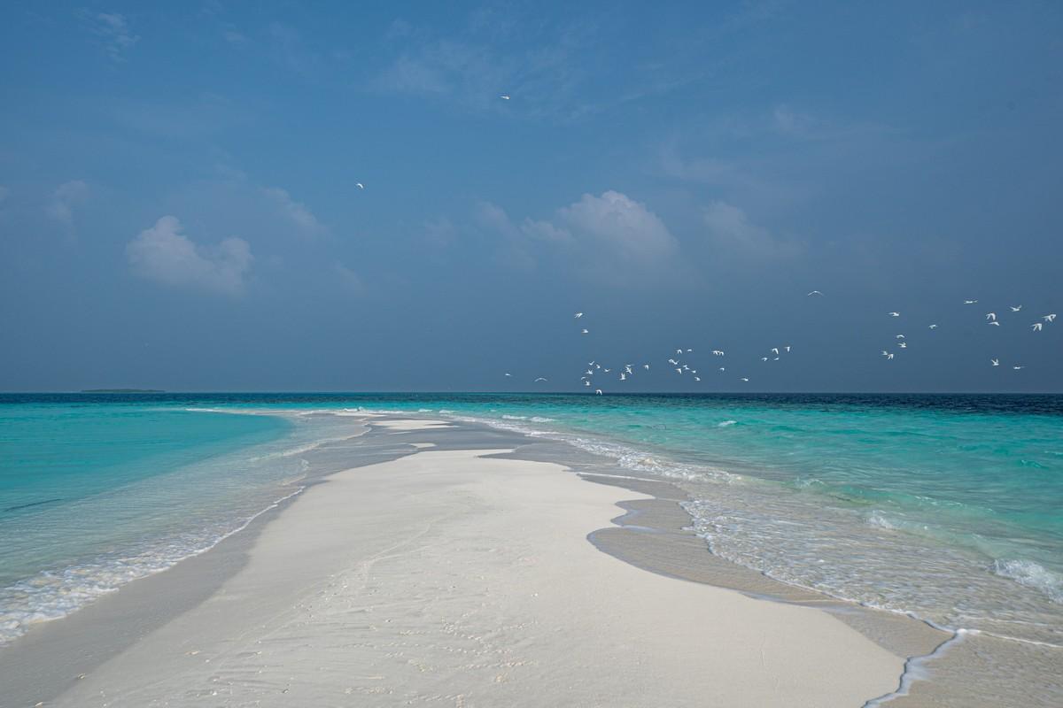 Острова везения в океане есть, практически (с) DSC07065