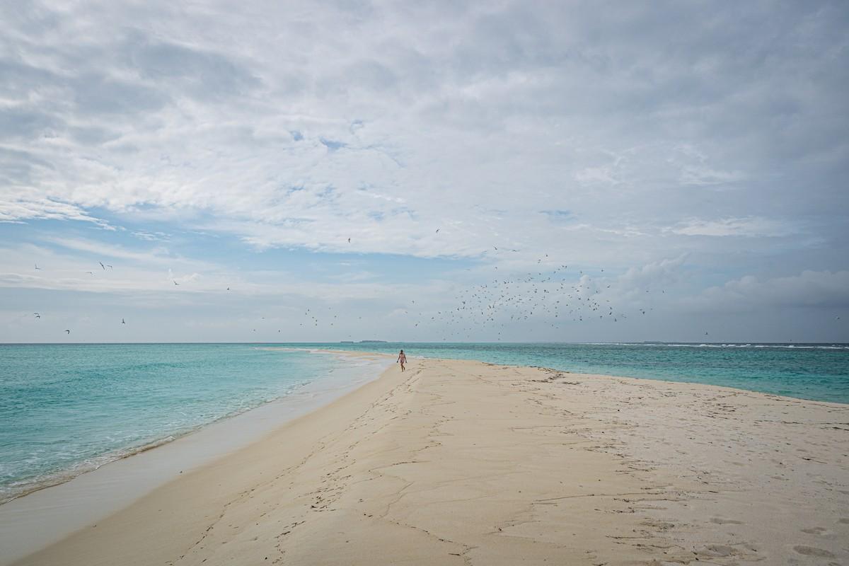 Острова везения в океане есть, практически (с) DSC07184