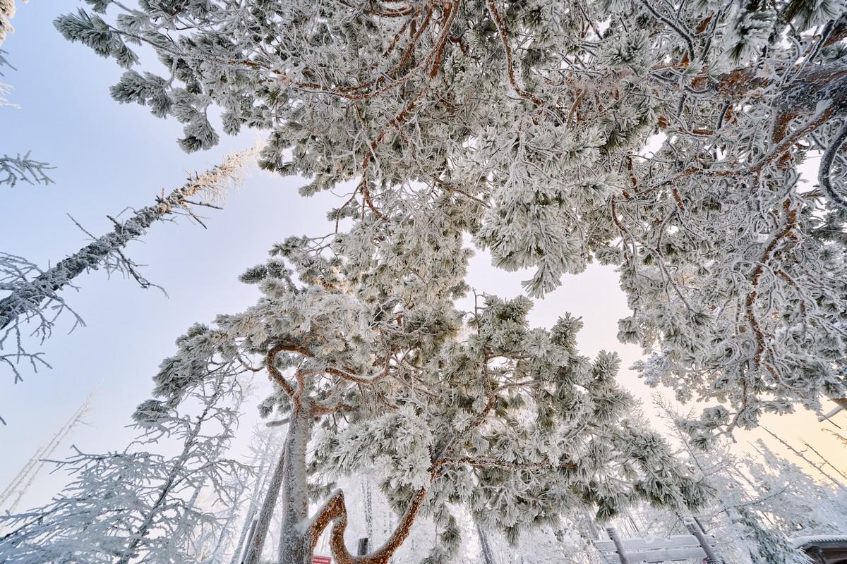Ленские столбы: зимой и летом другим цветом. 281-8485