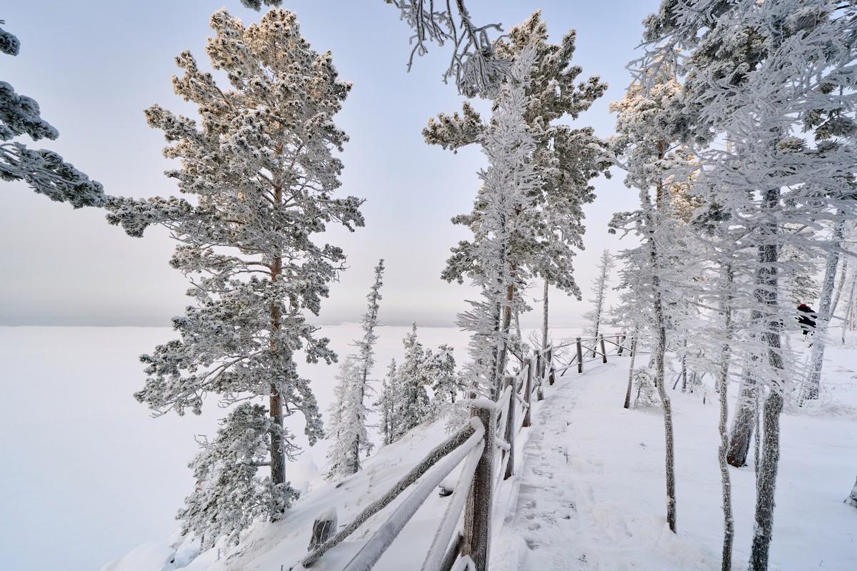 Ленские столбы: зимой и летом другим цветом. 281-8487