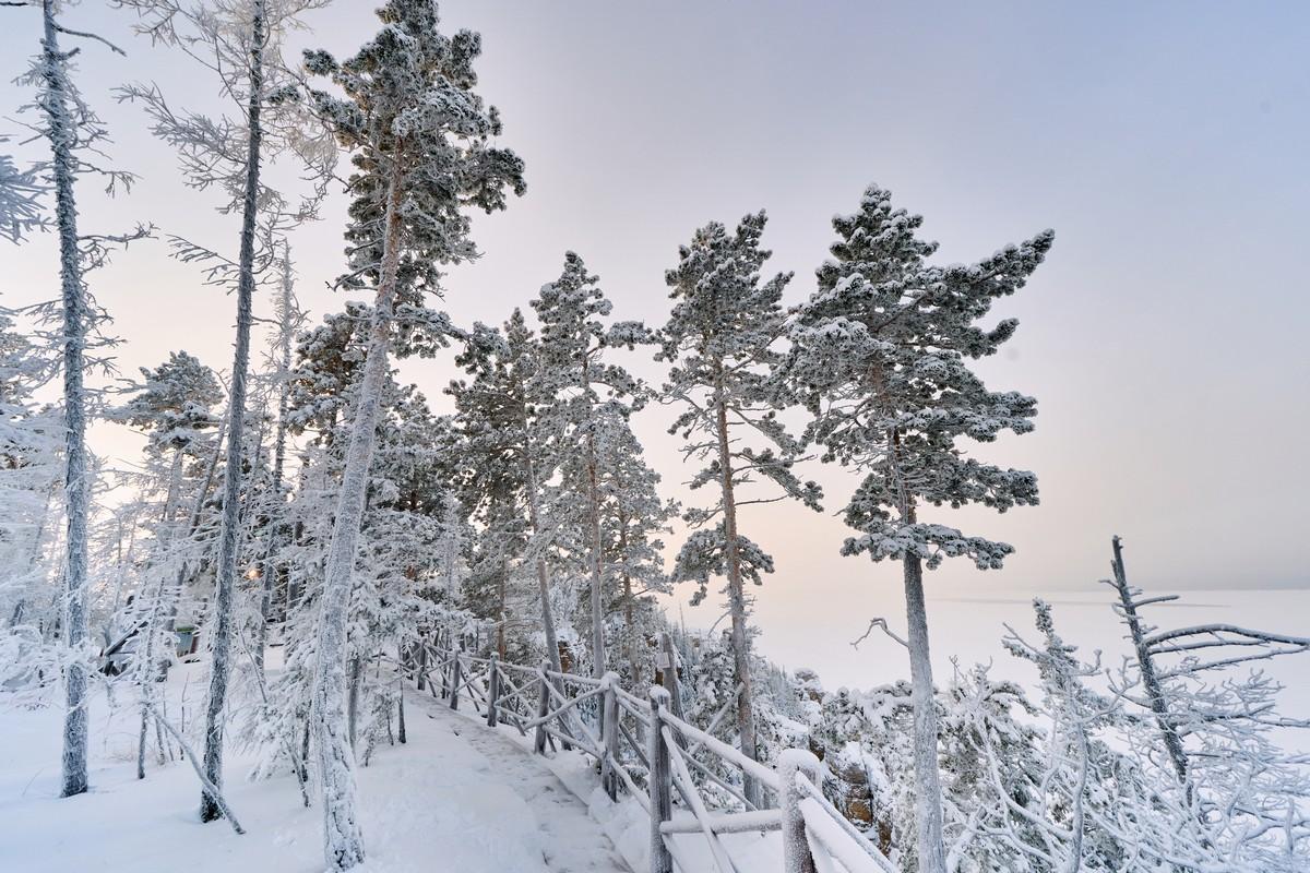 Ленские столбы: зимой и летом другим цветом. 281-8489