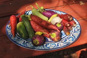 Vegetables-co-op-StDavids
