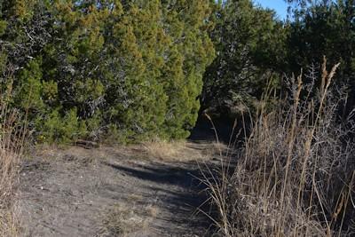 North-trail-diff-turn1-12-15-14
