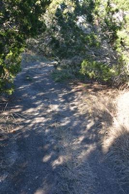 North-trail-diff-turn3a-12-15-14