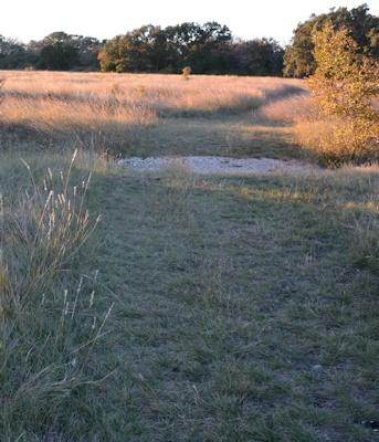 Ditch-crossing-trail-split