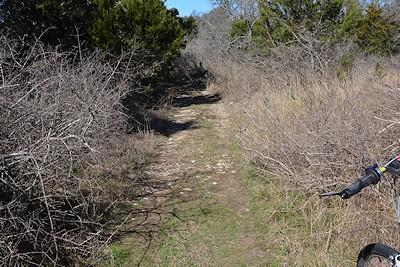 FoxPav-trail-entrance-trimming