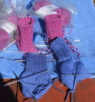 Blue and Rose socks 12-13-16