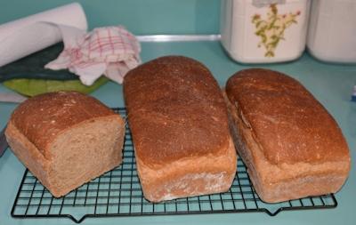 Bread-02-28-2017