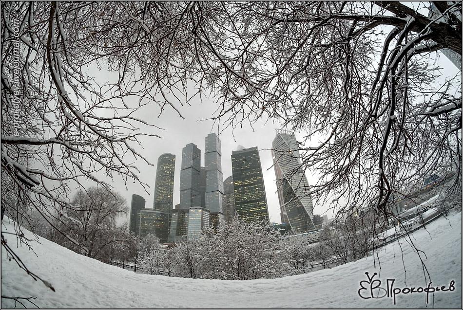 Москва 2019