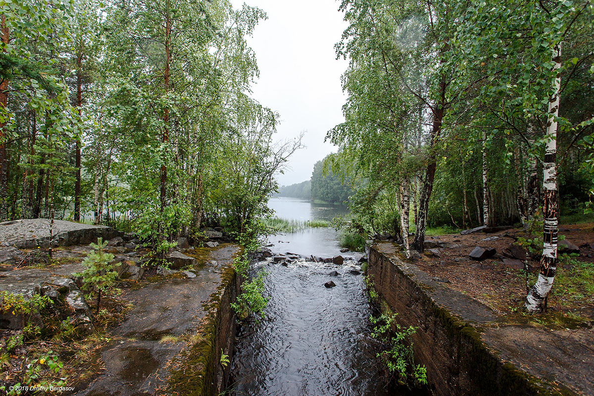 Офф-роуд тест в лесах Карелии тридороги2018