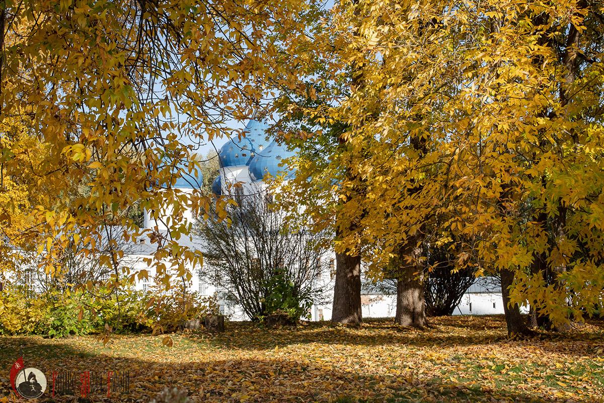 Свято-Юрьев монастырь Новгородская область,Православие,Россия,Культура