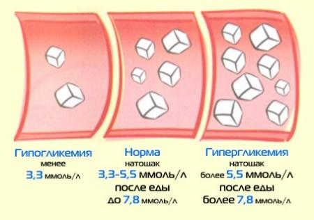 диетолог анализ крови
