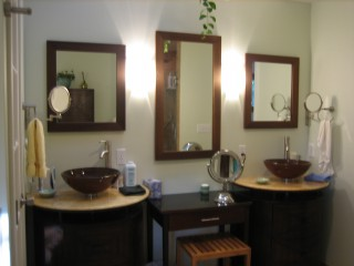 sinks and mirrors, plant hanging down