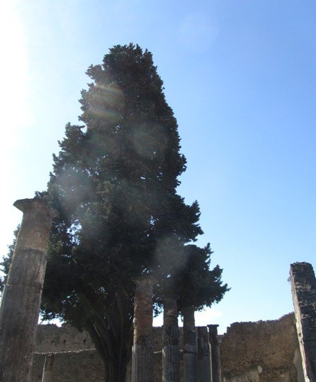irina-fortuna-pompei 28