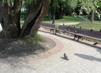 irina-fortuna-tsaritsino-birds 09