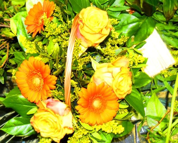 irina-fortuna-flora 08