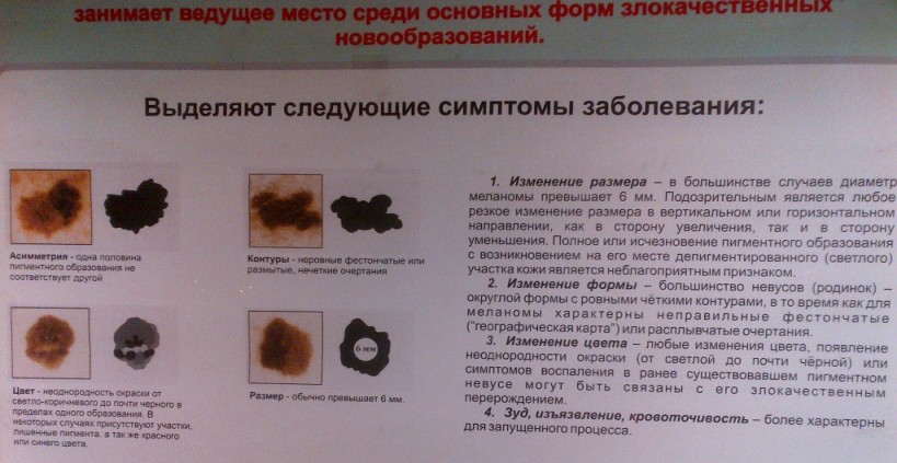 IMG-20121221-00019