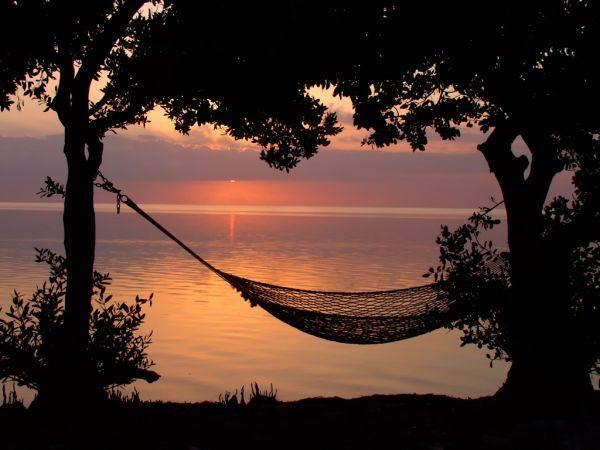 beach-hammock-relax-tree1