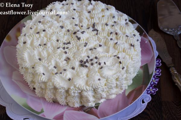 Черемуховый торт2