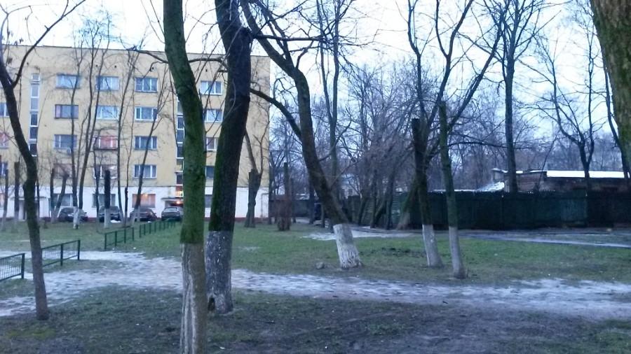 Kronirovanie-Chkalova-Burd1