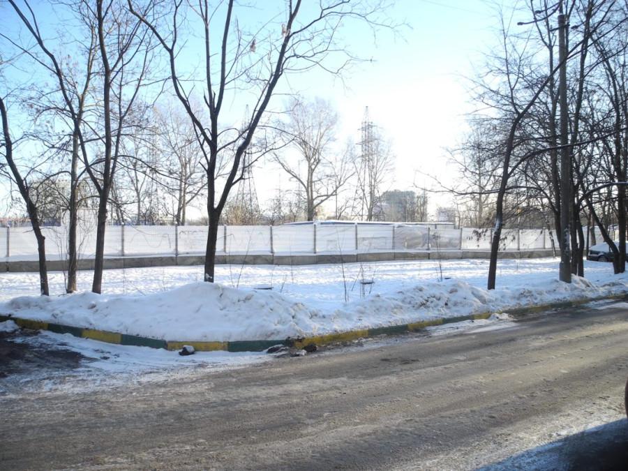 Vyrubka01-2014-1