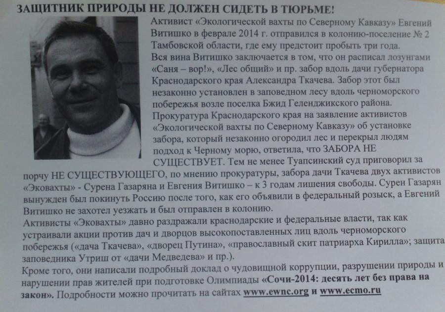 Пикет-8-03-2014-1