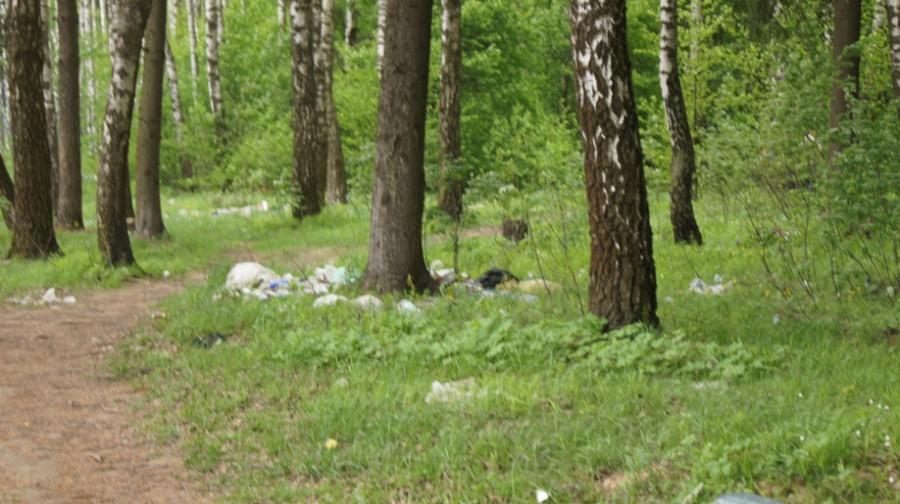 05-2014-Мусор в лесу 2